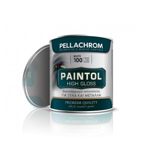 PAINTOL GLOSS